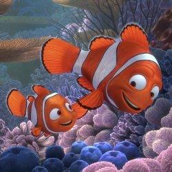 Image Finding Nemo 3D