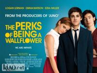 Suppl The Perks of Being a Wallflower