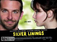 Suppl Silver Linings Playbook