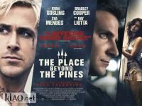 Suppl The Place Beyond the Pines