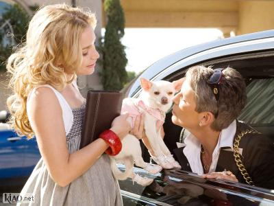 Preview Beverly Hills Chihuahua