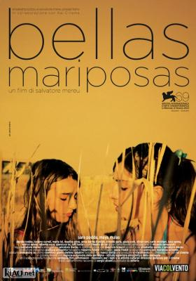 Poster_it Bellas Mariposas