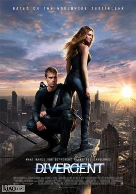 Poster_nl Divergent