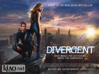 Suppl Divergent
