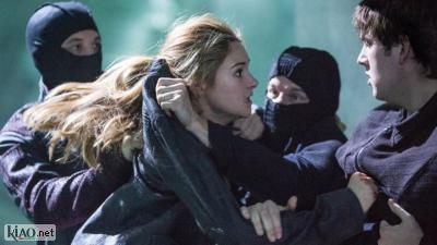 Video Divergent