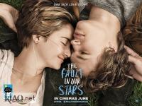 Suppl The Fault in Our Stars