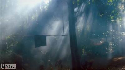 Video Song from the forest