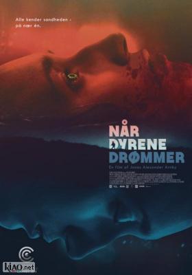 Poster_dk Når dyrene drømmer