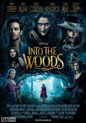 Poster_de Into the Woods