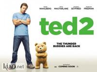 Suppl Ted 2