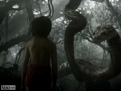 Extrait The Jungle Book