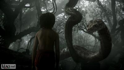 Video The Jungle Book