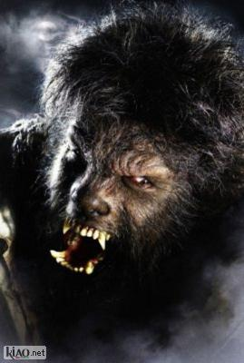 Suppl The Wolf Man