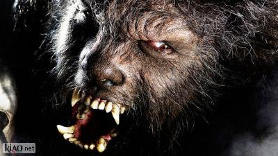 Video The Wolf Man