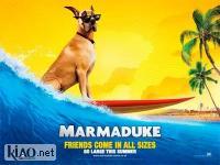 Suppl Marmaduke