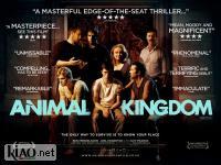 Suppl Animal Kingdom