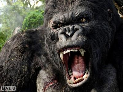 Extrait Kong: Skull Island