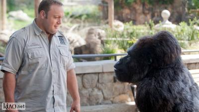 Video Zookeeper