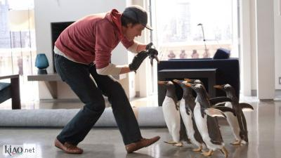 Video Mr. Popper's Penguins