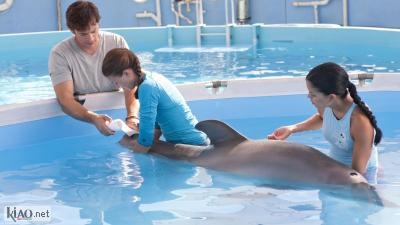 Video Dolphin Tale
