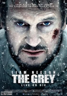 Poster_nl The Grey